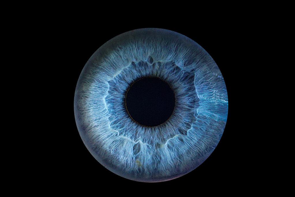 eye photography in malaga nerja marbella best iris photographer